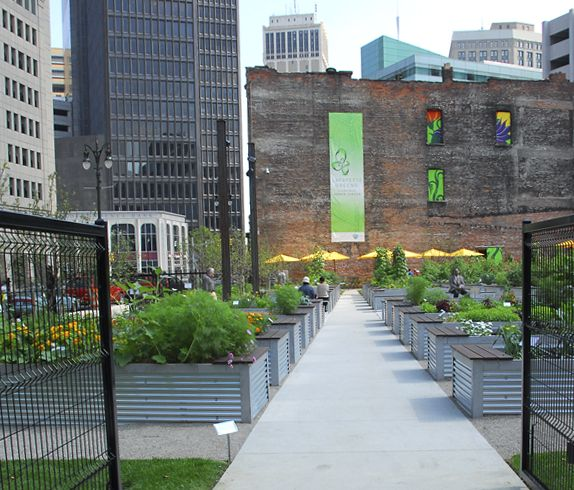 Lafayette Greens (urban Agriculture/community Space) In