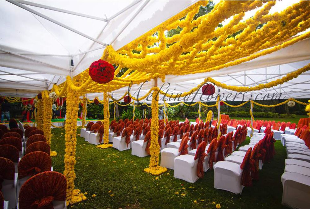 Plan outdoor wedding decoration for a blooming start of life plan outdoor wedding decoration for a blooming start of life junglespirit Image collections