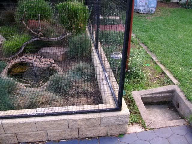 bird aviary design ideas - Google Search | zoo enclosures ...