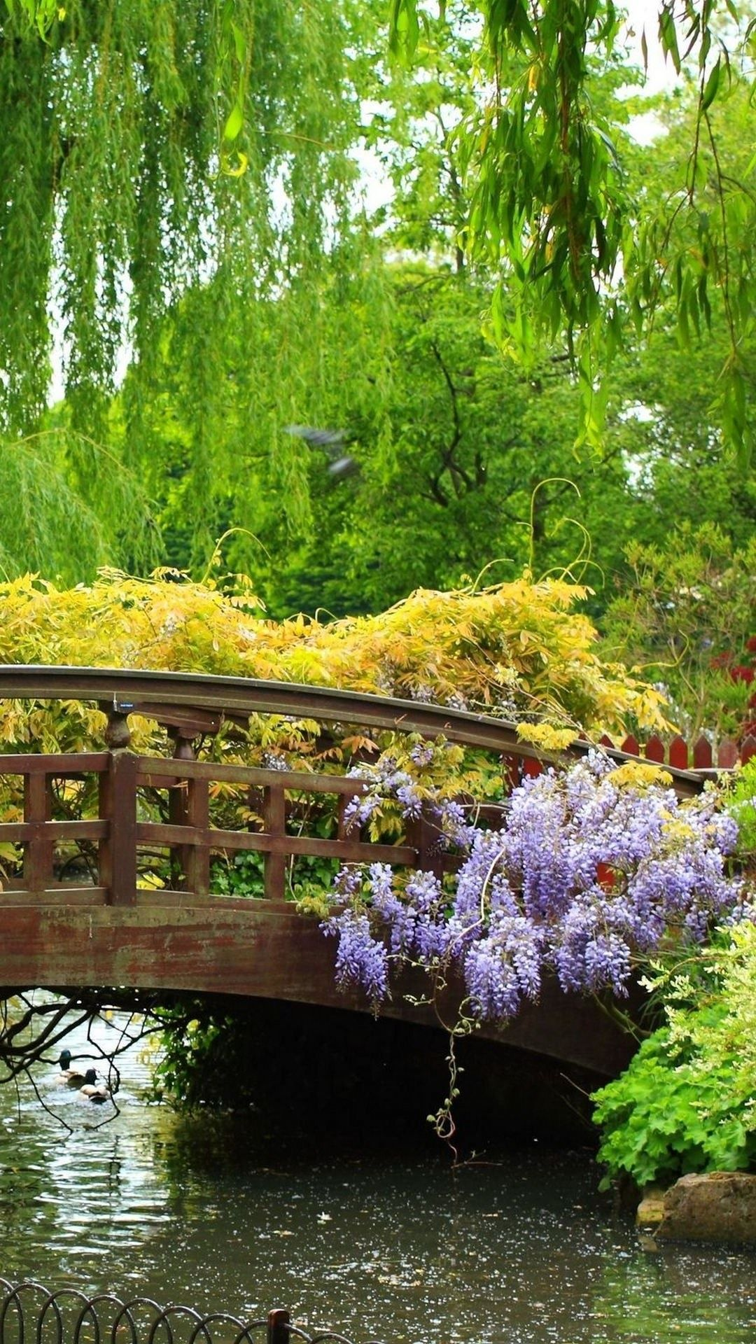 wooden bridge blue flowers green trees iphone 6 plus hd wallpaper