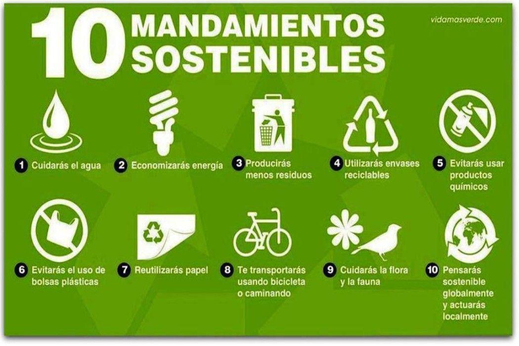 Cuidar Al Medio Ambiente En El Que Vivimos No Es Tan Complicado