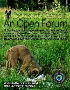 "Sunday, April 15, 2012, more than 50 individuals representing dozens of organizations and the community joined the ""Dogs of Detroit: An Open Forum"" for constructive open discussion of all matters relating to the dog population in Detroit."