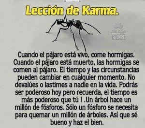 Lección De Karma Karma Frases Karma
