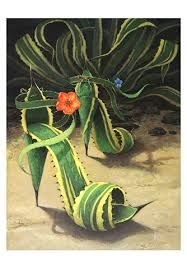 Agave Spikes heels