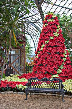 c4d331a4540c7e9371fef51c0d82b064 - Parking At The Botanical Gardens Birmingham