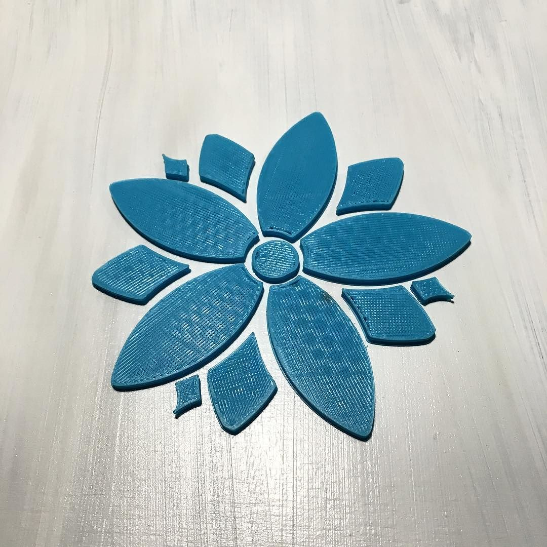 Something we liked from Instagram! #flower #3printed #3dprinter #art #3dart #intheshop #xyzprinting by fast_foot_jack check us out: http://bit.ly/1KyLetq
