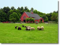 Drumlin Farm is open Tuesday-Sunday year-round, except Thanksgiving, Christmas Day, and New Year's Day. Please note, we are closed on Mondays except on federal Monday holidays. Occasionally, we are closed to general visitation for special events.    Nature Center Hours: 9:00 am-5:00 pm March 1-October 31; 9:00 am-4:00 pm November 1-February 28. Trails: Open only when the nature center is open. Drumlin Farm is closed Mondays