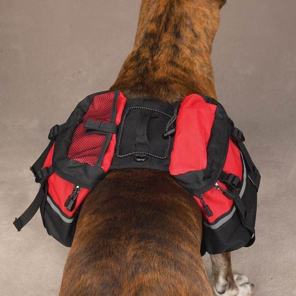 Day Trippers Dog Backpack - Red at Baxterboo