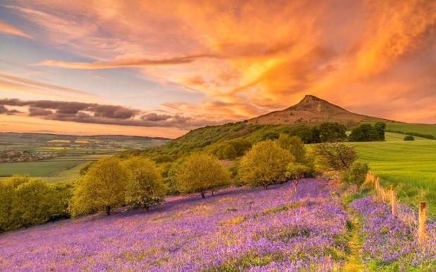 Un colorido amanecer en Roseberry Topping, North Yorkshire, Inglaterra (Alan Cook, 2017)