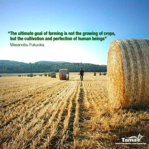 Farmer Quotes Gorgeous The Ultimate Goal Of Farming Is Not The Growing Of Crops But The