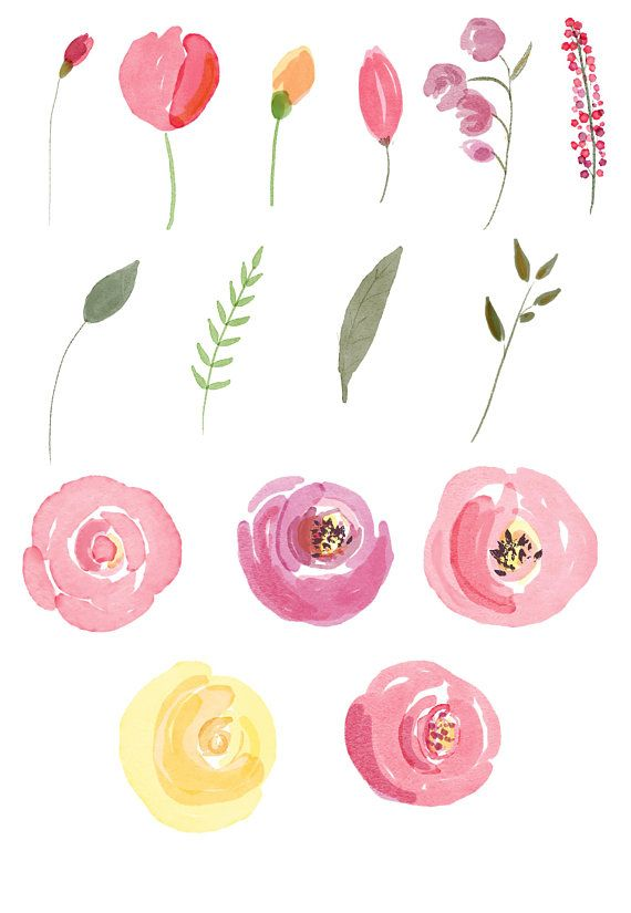 Watercolor Roses Clipart Summer Floral Clip Art Rosebuds