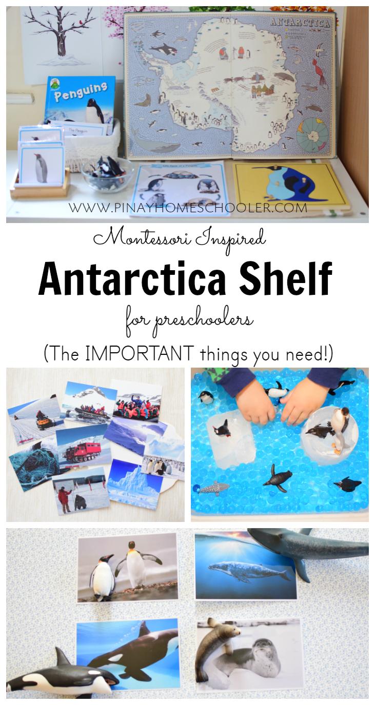 Montessori Inspired Antarctica Shelf For Preschoolers Montessori Activities Montessori Geography Antarctica Activities [ 1375 x 731 Pixel ]