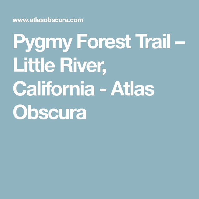 Forest Trail, Little River, California