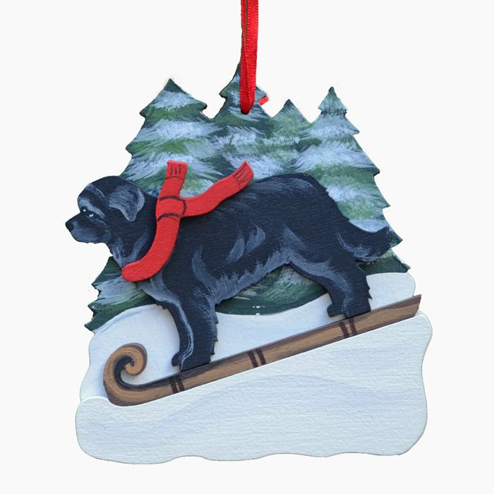 If your Newf has ever been near kids on toboggans, you bet he's going for a ride! Super fun ornament features a great hand painted Newfloundland taking a good old fashion run down the hill. Great orna