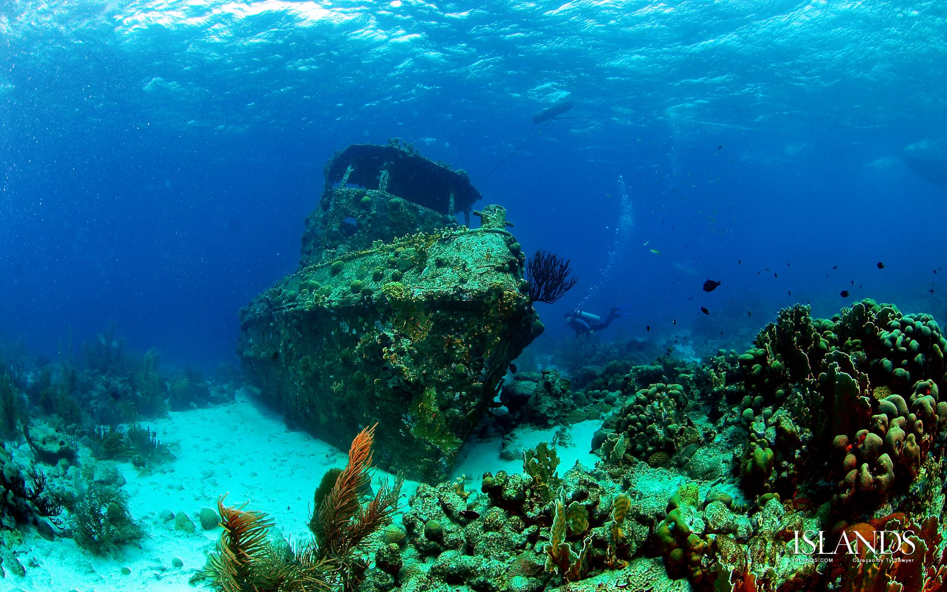 Caribbean Diving: Caribbean, Ship Wreck And Adventure Awaits