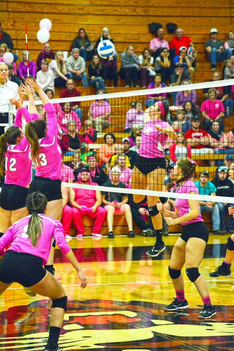 Four Wildcats Named To All Region Team Volleyball Players Teams Region