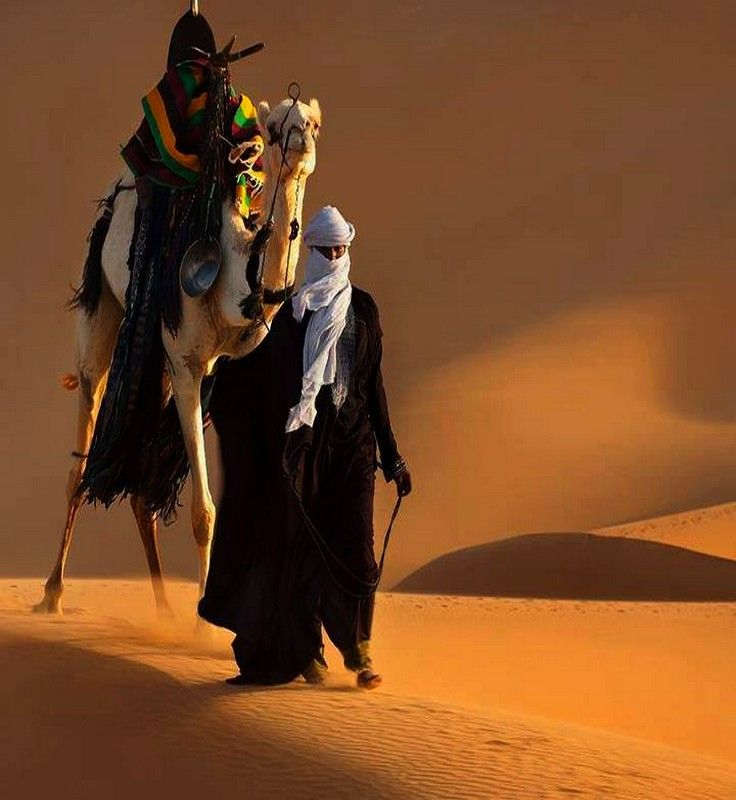 A Beautiful Shot Of A Man Walking With His Camel In
