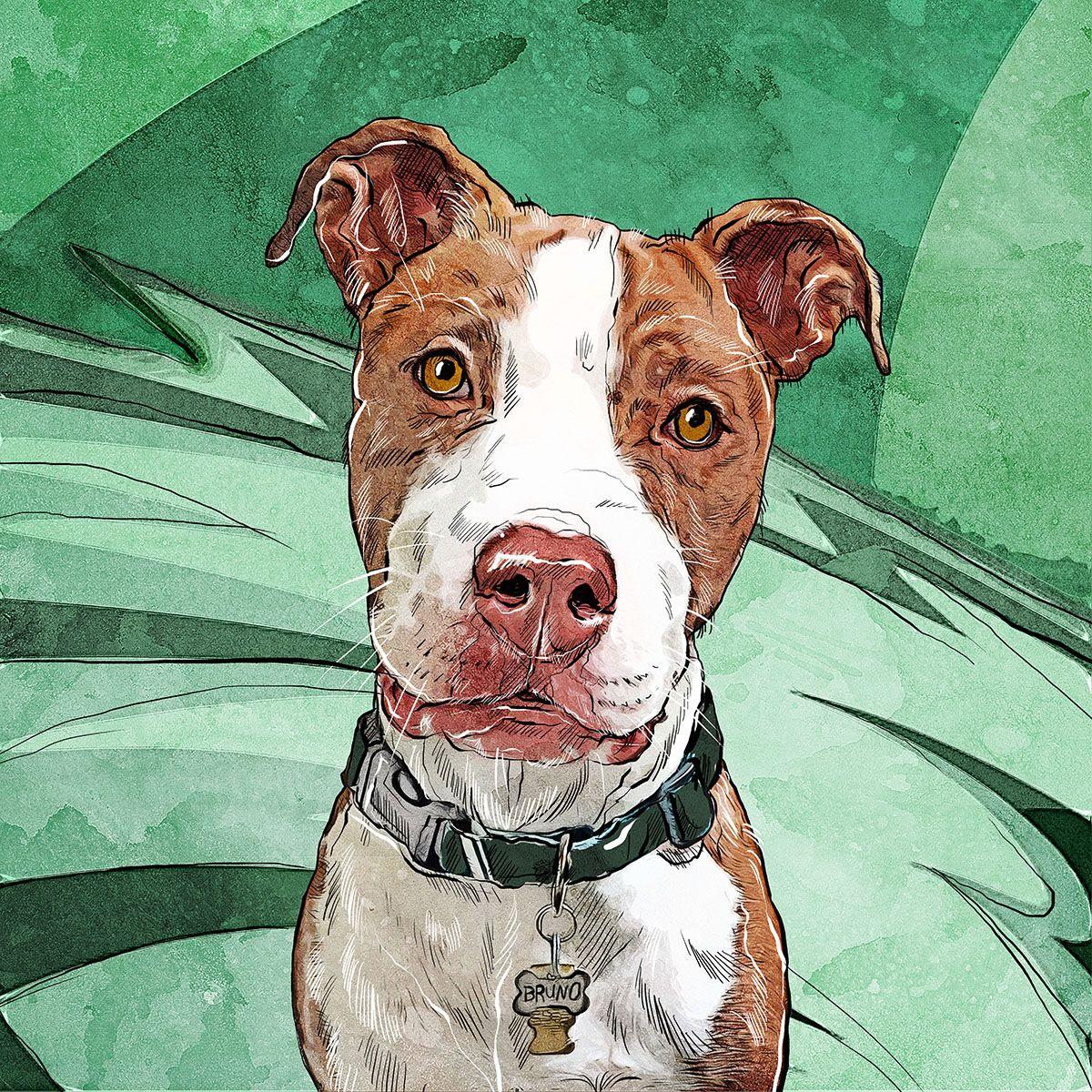 Pit Bull Art Pet Portrait Pet Portrait Artist Art Prints Pit Bull Pit Bull Painting Art Dog Art Colorful Pet Portrait DawgArt