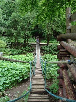 how to build a rope-plank bridge | rope bridge, bridge and woods