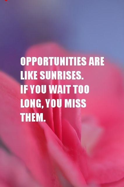 Opportunities Are Like Sunrises If You Wait Too Long You Can Miss