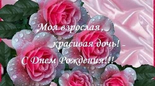 Pozdravleniya Dlya Dochki Svoimi Slovami Flowers Rose Plants