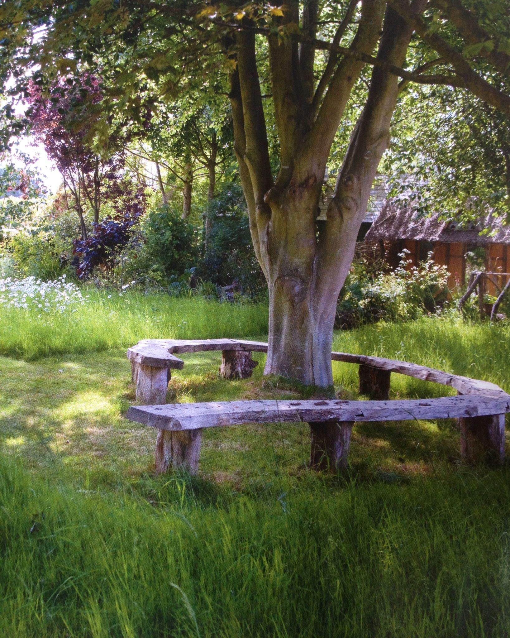 Rustic Tree Bench Garden Ideas Pinterest Tree Bench Bench And Gardens