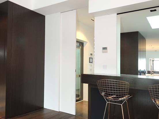 Slimline Cavity Door Cavity Sliding Doors House Doors Sliding Doors