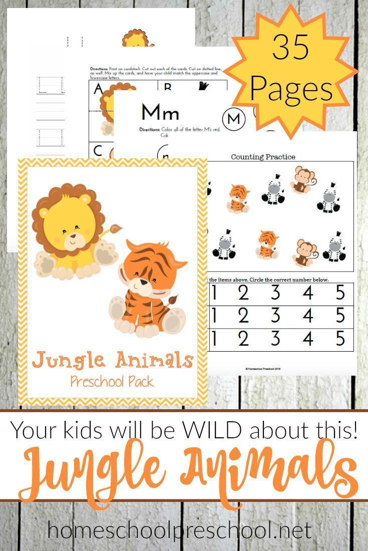 Teach Preschool With Free Jungle Animal Printables Jungle Animals Preschool Jungle Preschool Themes Preschool Themes [ 1100 x 735 Pixel ]