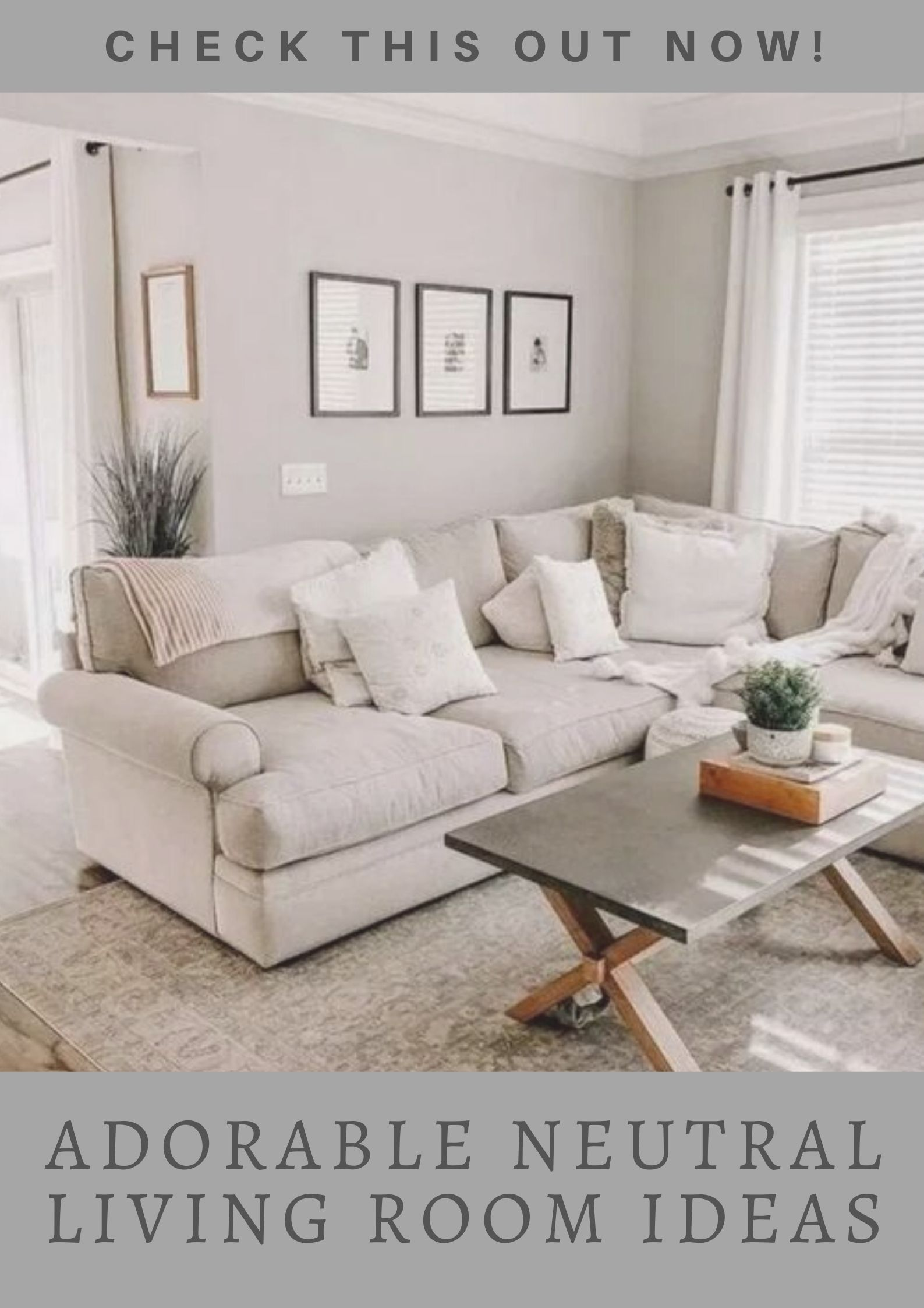 Cool Neutral Living Room Ideas For Calming Effect Apartment