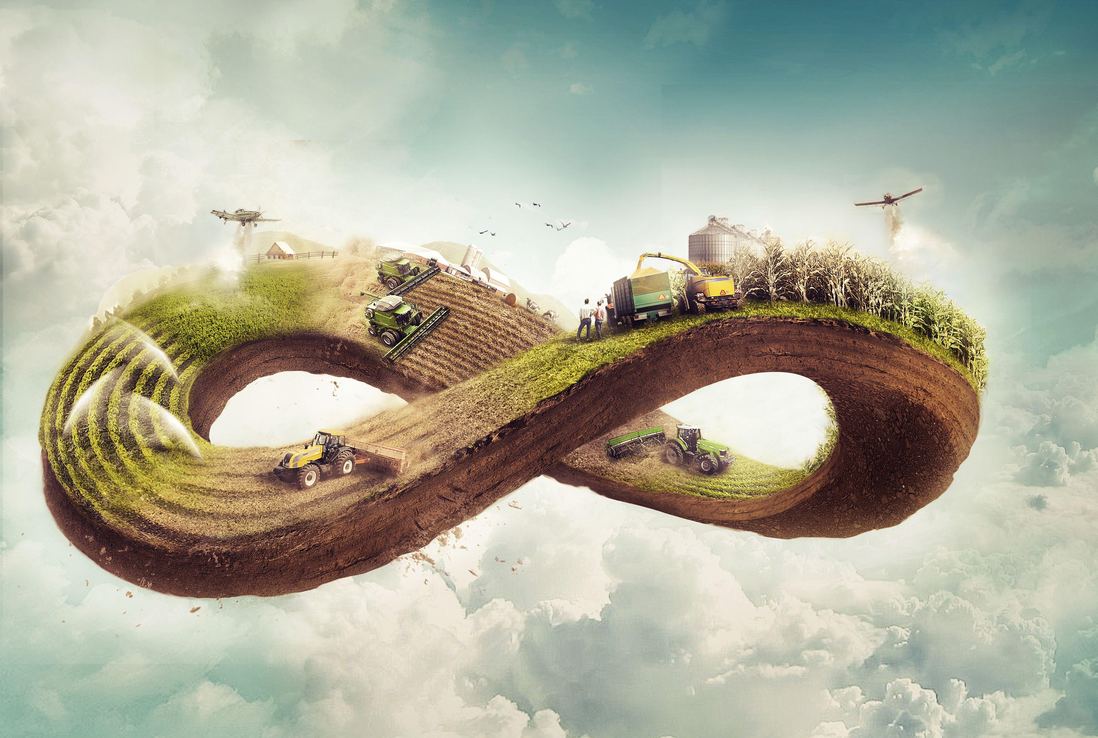 Ciclo plantação