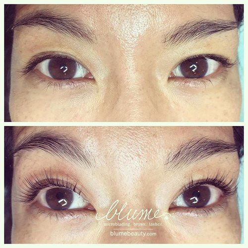 561bb42fa5e Let me work my magic on your lashes! Book online at www.styleseat.com/Blume  🖤 🖤 🖤