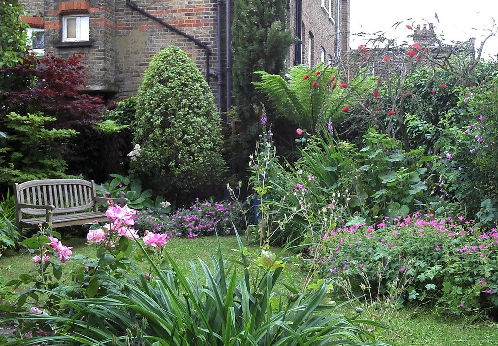 plantas para jardines   jardin   Pinterest   Plantas para jardin ...