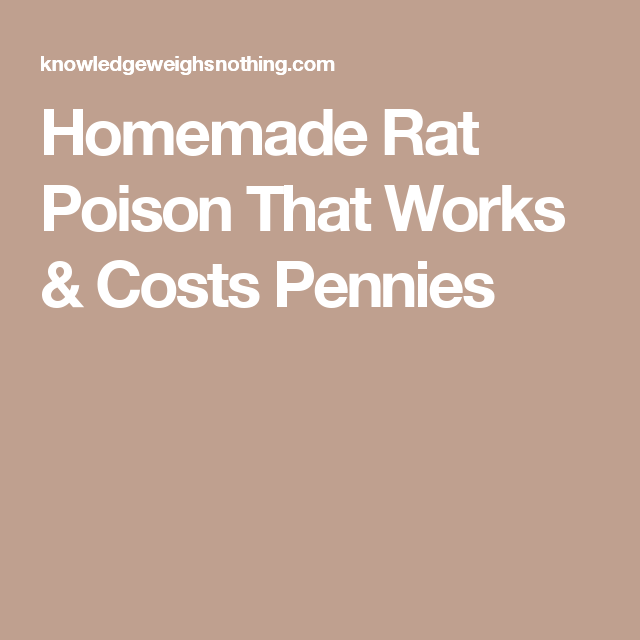 Homemade Rat Poison That Works & Costs Pennies | DIY