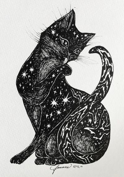 inspiração do dia gato preto moon pinte