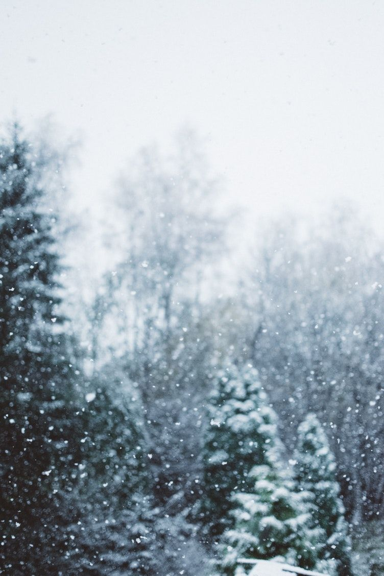 Christmas Wonderland 2020 Download Pin by Rosamond on Christmas in 2020 | Iphone wallpaper winter