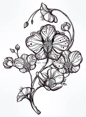 Pin By Marie Rascal On Tattoo Orchid Pinterest Tatouage Dessin