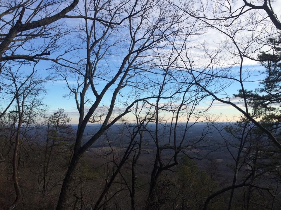 The view from Pilot mt in the winter #pilotmt #photography #trees