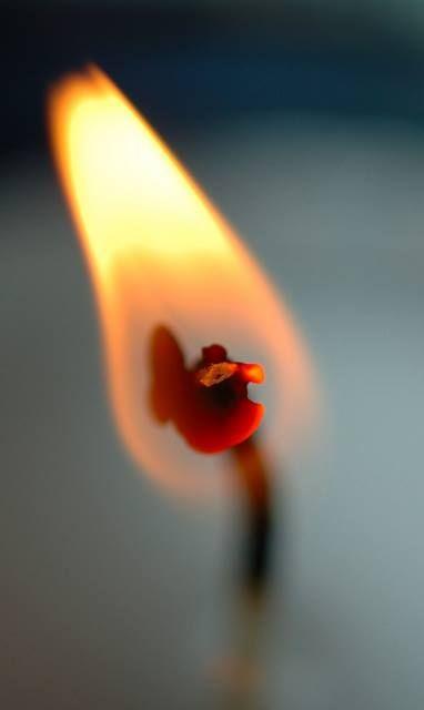 yo soy la tierra de tus raìces:lo dice el corazòn y el fuego de tu piel