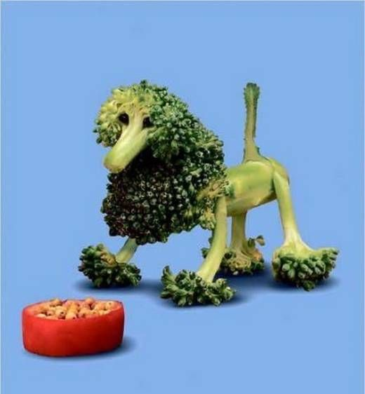 funny fruit pictures