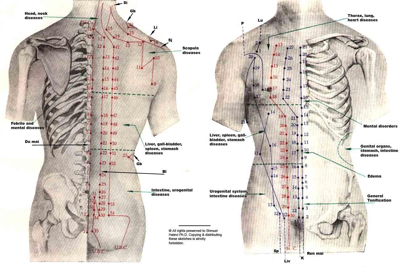 Does Acupuncture Work for Back Pain? Mystery Unravelled ...