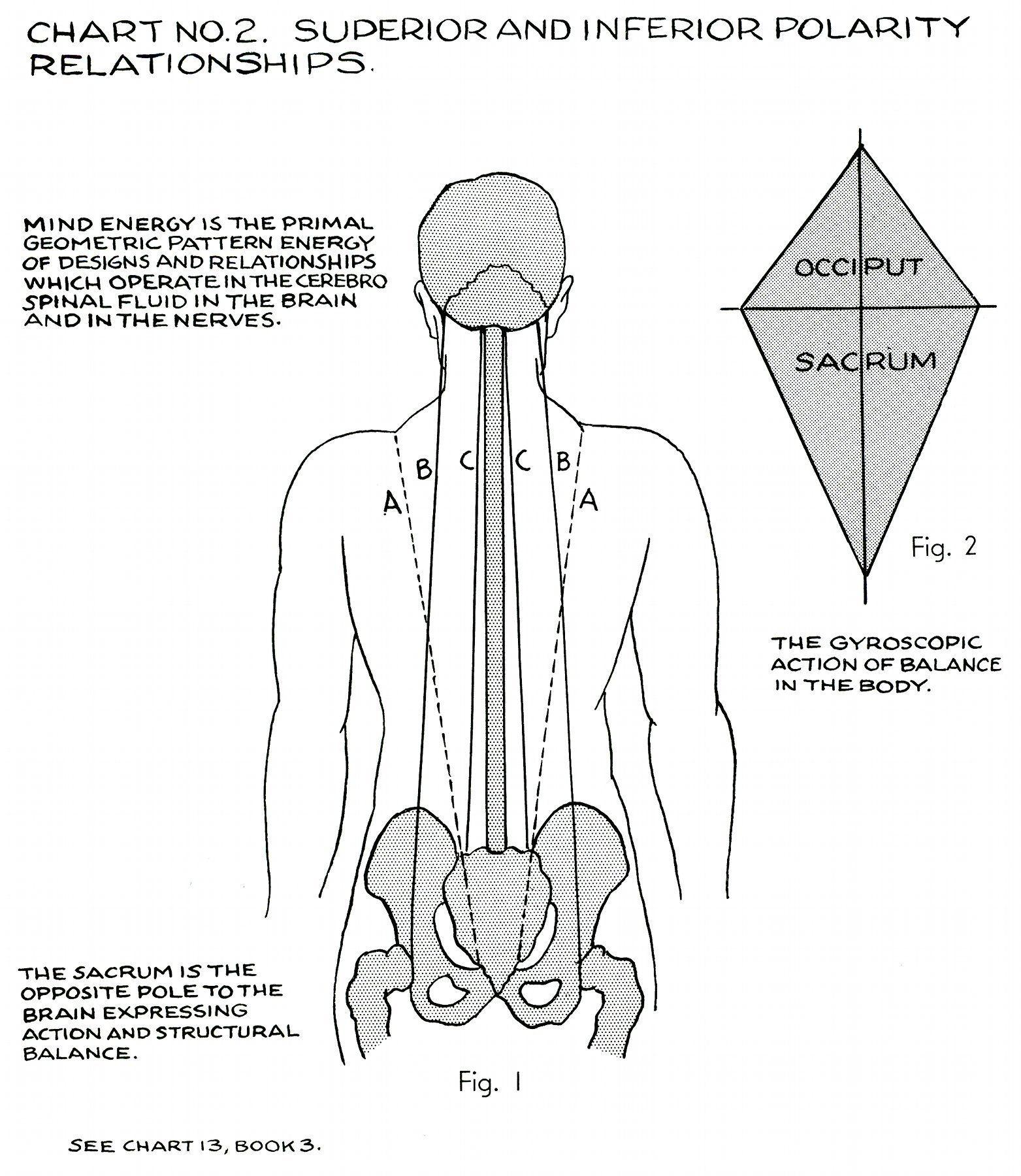 polarity therapy - Google Search | Hachiriki : 8 Powers | Pinterest ...