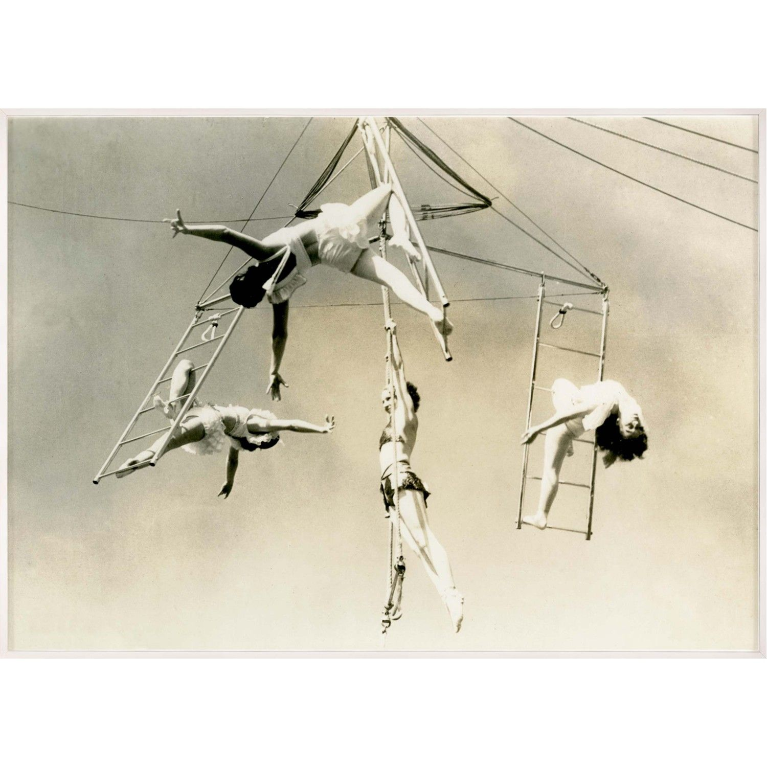 Trapeze 1 by Natural Curiosities. Matte White Large Shadowbox - 1 ...