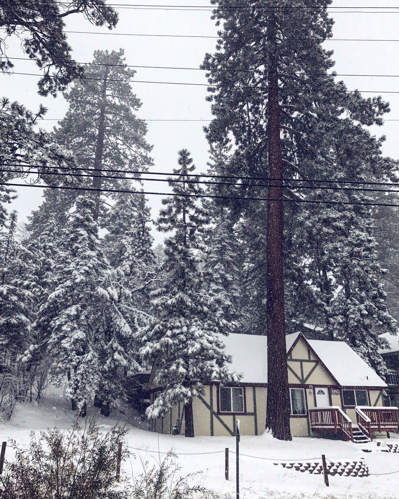 Elsewherebaby snowy big bear lake california big