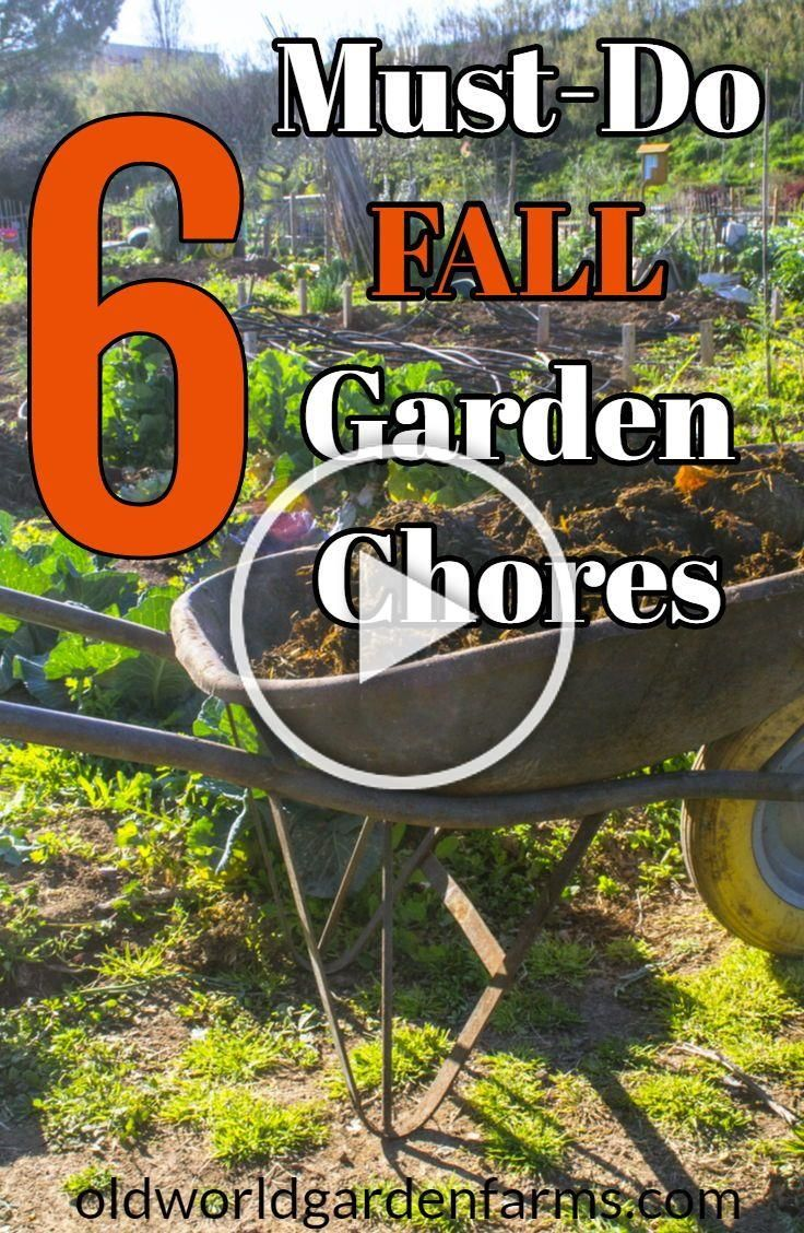 6 MustDo Fall Garden Chores  what you do now will help your garden next year