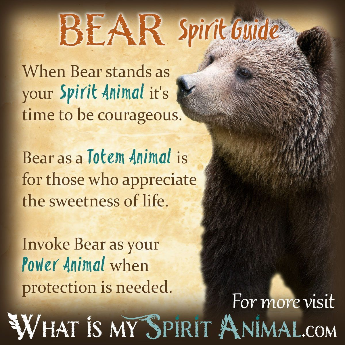 Bear symbolism meaning power animal animal totems and totems bear spirit animal totem power animal symbolism meaning 1200x1200 biocorpaavc