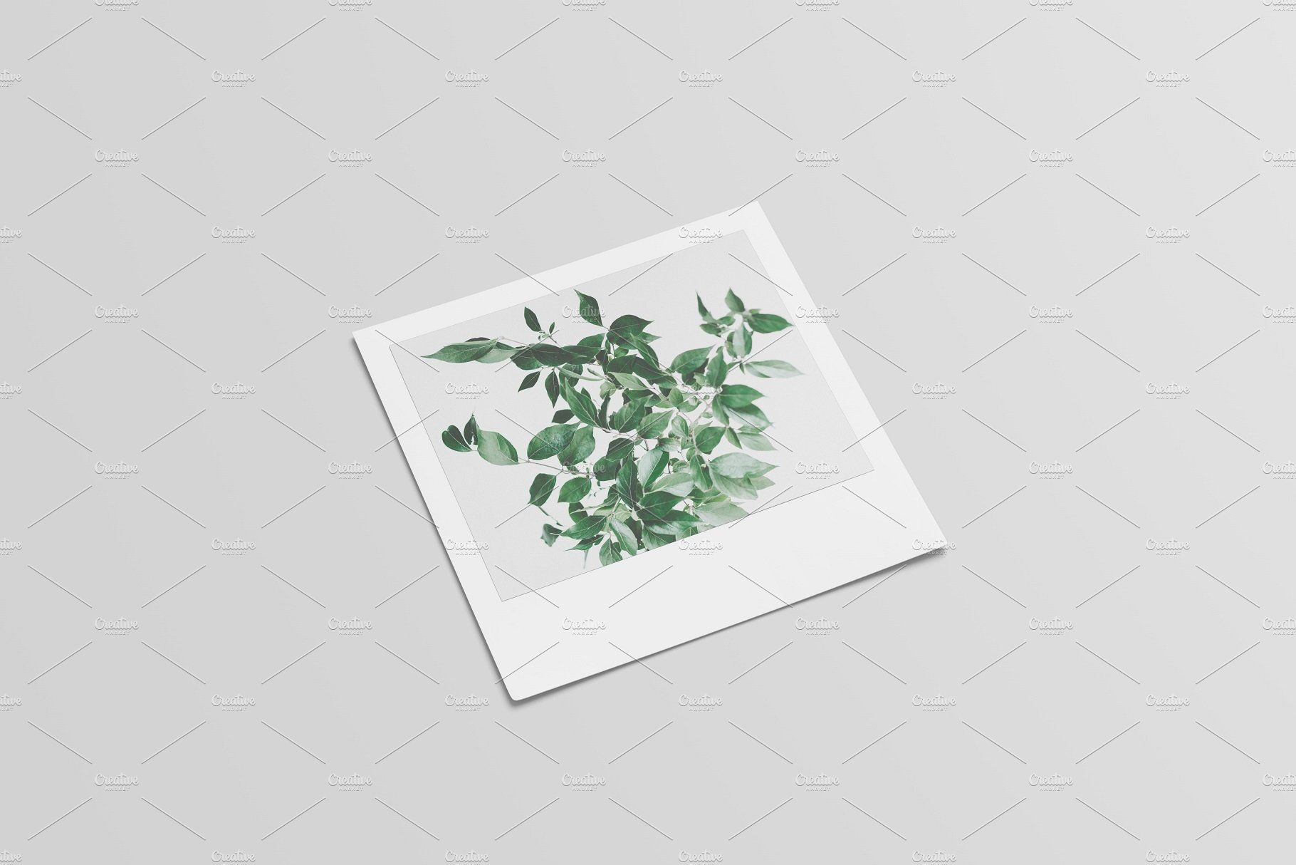 Photographic filter and Frame Mockup (With images) Frame