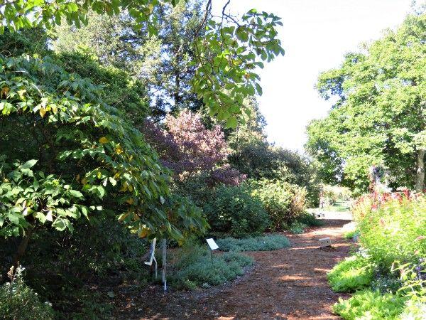 c4e16e519ffd73a57a77cabc76f691f9 - Yew Dell Botanical Gardens Louisville Ky