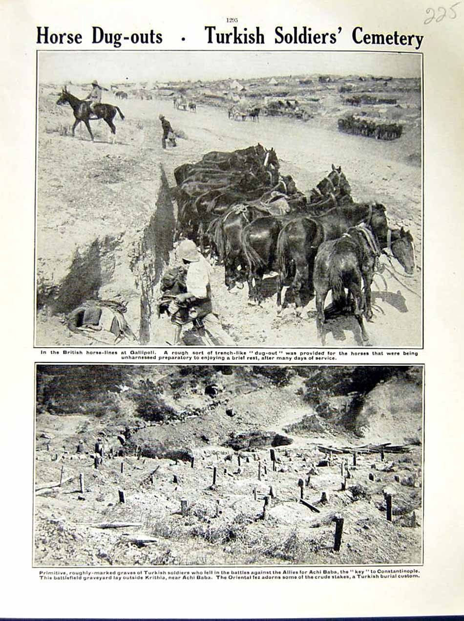Amazon.com: Old Original Antique Victorian Print 1915 World War British Horse Soldiers Gallipoli Graves 225E286. A page from ' The War Illustrated'.