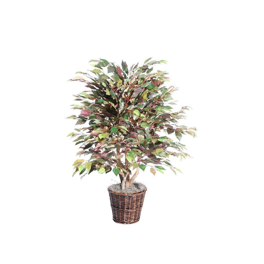 4' Mystic Ficus Extra Full by Vickerman