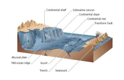 Classical Conversations Cycle 1 Week 18. CC C1 W18. Types Of Ocean Floor